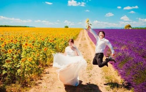 Bạn đã đến những cánh đồng hoa tuyệt đẹp này chưa?