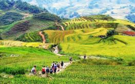 Du lịch Sa Pa tự túc chỉ với 700.000 đồng