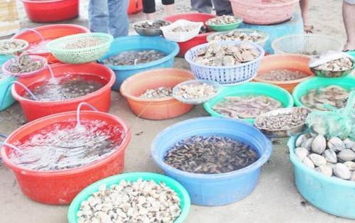 Tham quan chợ hải sản ăn liền ở Đà Nẵng