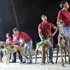 Trải nghiệm thú vị xem đua Chó tại Trường Đua Lam Sơn – Vũng Tàu