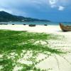 Những điều thú vị khi đi du lịch Đà Nẵng cần nhớ
