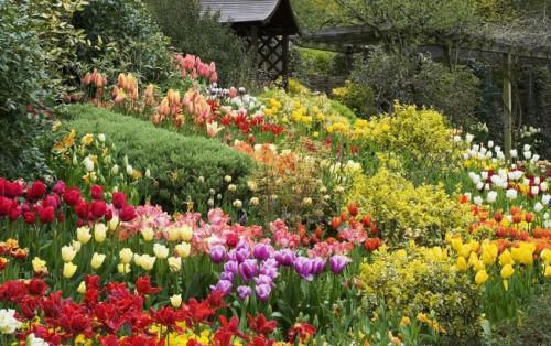 Độc đáo những kỳ lễ hội hoa Đà Lạt