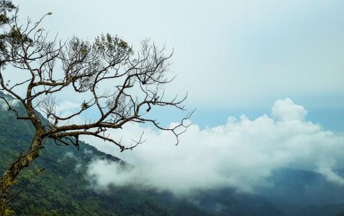 Du lịch Tam Đảo tự túc – Một chuyến đi để đời