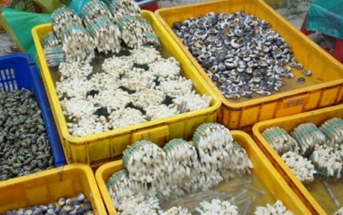 Khám phá 5 nơi hải sản Sài Gòn ngon