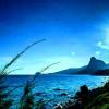 Khám phá sự đa dạng sinh học vườn quốc gia Côn Đảo