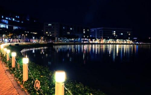 Hồ Bán Nguyệt và cầu Ánh Sao Sài Gòn – Điểm hẹn lung linh cho một đêm đáng nhớ