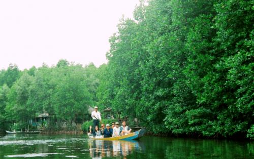 Kinh nghiệm đi khu du lịch sinh thái Vàm Sát Cần Giờ