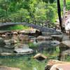 Khu du lịch Thủy Châu – Thiên đường dã ngoại lý tưởng cho người Sài Thành