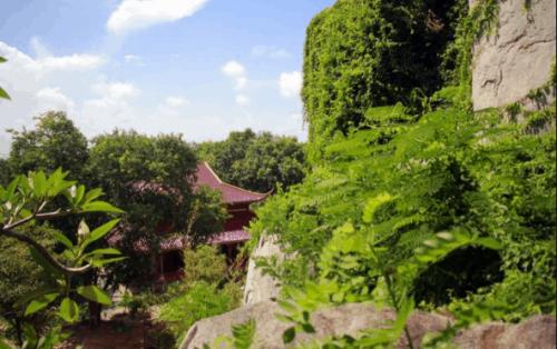 """Đến thăm đàn """"quỷ nhỏ"""" đáng yêu tại chùa Khỉ Vũng Tàu"""