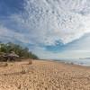 Truy tìm vẻ đẹp hoang sơ khi đến Bãi Đông Thanh Hoá