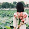Hồ Tây – Chốn yên bình đến lạ kì của Hà Nội