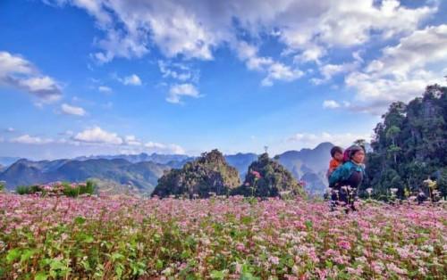 Top 5 địa điểm du lịch miền Bắc không thể bỏ qua vào tháng 10