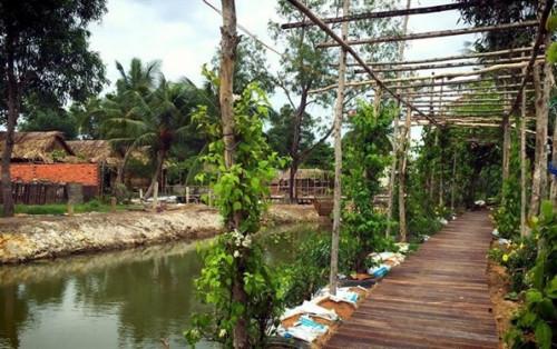 5Ku Farm – Nông trại xanh giữa lòng Sài Thành