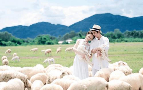 Trại cừu vũng tàu – Địa điểm checkin siêu HOT dành cho giới trẻ