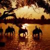 15 địa điểm du lịch Buôn Ma Thuột đẹp quên lối về