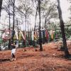 Tận hưởng những ngày cuối tuần đầy thú vị tại khu du lịch sinh thái Bản Rõm – Sóc Sơn