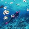 Dắt túi ngay kinh nghiệm lặn biển khi đến Nha Trang
