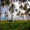 6 bãi tắm đẹp nhất ở thành phố biển Phan Thiết là những đâu?
