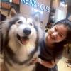 """Điểm danh 11 quán cà phê thú cưng ở Sài Gòn """"SIÊU CUTE"""""""