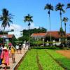 Làng rau Ngọc Lãng một chốn xanh yên bình đến lạ của Phú Yên