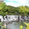 """Khám phá """"biển trong rừng"""" ở Đồng Nai hè này – Công viên nước Suối Mơ"""