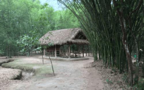 Khám phá địa đạo Củ Chi – Nơi ghi dấu ấn lịch sử vang dội của Sài Gòn