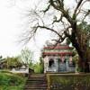 Làng cổ Phước Tích nét đẹp cổ kính rất riêng tại Huế