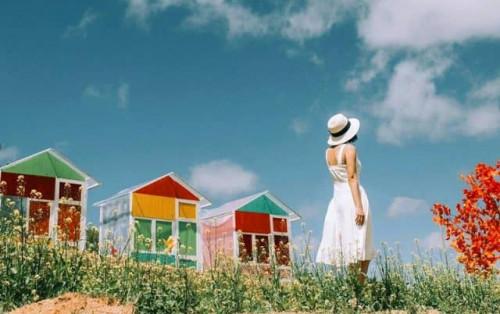 """Sunny Farm Đà Lạt địa điểm """"sống ảo"""" mới lạ cho giới trẻ"""