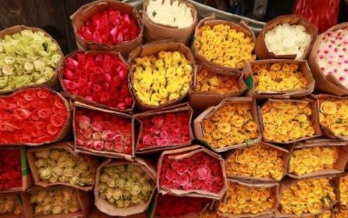 Kinh nghiệm lang thang chợ hoa không ngủ Hồ Thị Kỷ Sài Gòn