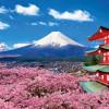"""Cẩm nang kinh nghiệm du lịch Nhật Bản – """"xứ sở hoa Anh Đào"""""""