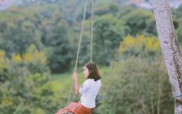 House Of Lens Coffee – Trải nghiệm Bali Swing mạo hiểm tại Việt Nam