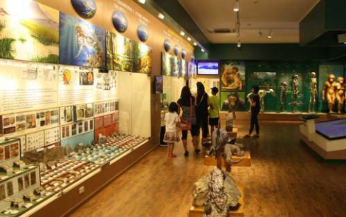 """Bảo tàng Thiên nhiên Việt Nam – Ngỡ ngàng một """"Thế Giới"""" động thực vật thu nhỏ"""