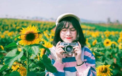 Tháng 8 – Cả một thiên đường hoa Đà Lạt rực rỡ đang chờ bạn!