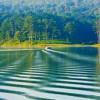 """Khám phá """"thiên đường xanh"""" ở Hồ Tuyền Lâm Đà Lạt"""