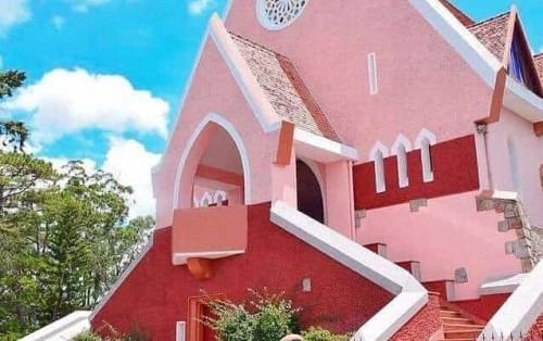 Rực rỡ sắc hồng độc đáo tại nhà thờ Domaine de Marie Đà Lạt