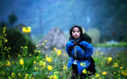 """Hành trình đến với núi rừng Đông Tây Bắc – Câu chuyện của những chuyến đi """"đi để trở về"""""""