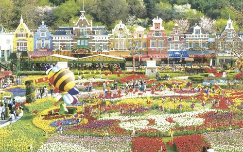 Bỏ túi kinh nghiệm vui chơi công viên Everland Hàn Quốc