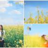 Truy tìm lối vào những cánh đồng hoa cải vàng khiến giới trẻ mê mẩn tại Đà Lạt
