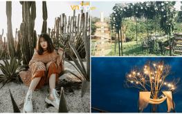 Hot 1000 độ homestay sở hữu vườn xương rồng đẹp nhất Buôn Mê Thuột
