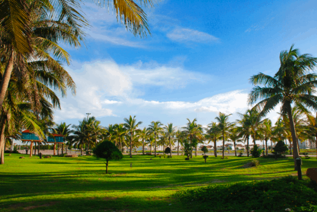 Công viên Biển Đông xanh mát vào ngày hè