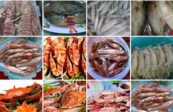Các loại mặt hàng hải sản ở chợ Đầm Nha Trang