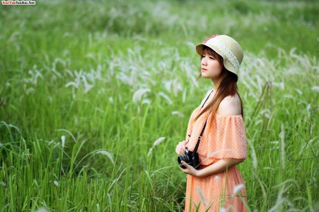 Tha hồ khoe sắc giữa đồng lau mơ màng Những thiên đường chụp ảnh mùa thu ở Hà Nội