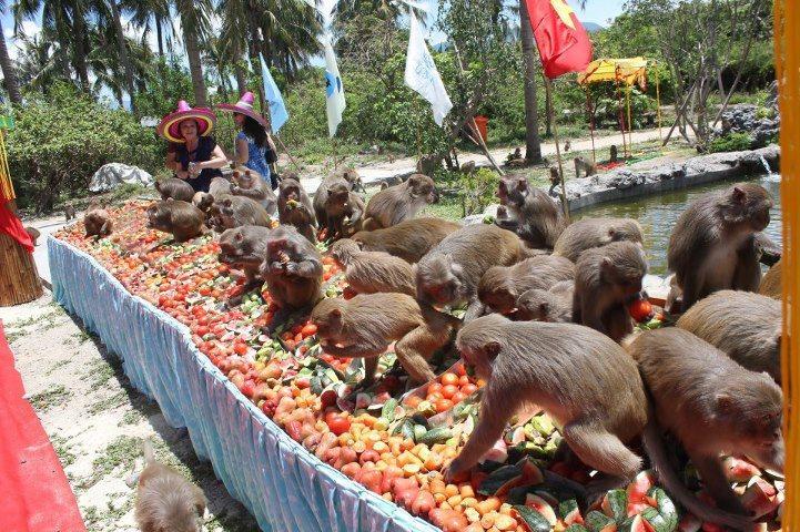Kinh nghiệm phượt Nha Trang nhật ký du lịch bụi Nha Trang