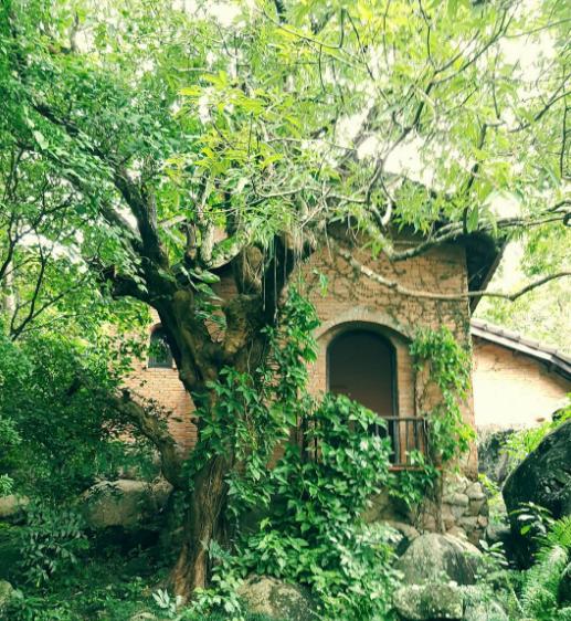 Bảo tàng mang dáng dấp ngôi nhà truyền thống miền trung du xử Quảng, quanh năm khép mình dưới tán cây xanh mát
