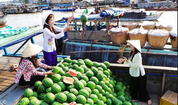 Chợ đầu mối, buôn bán hoa quả tươi