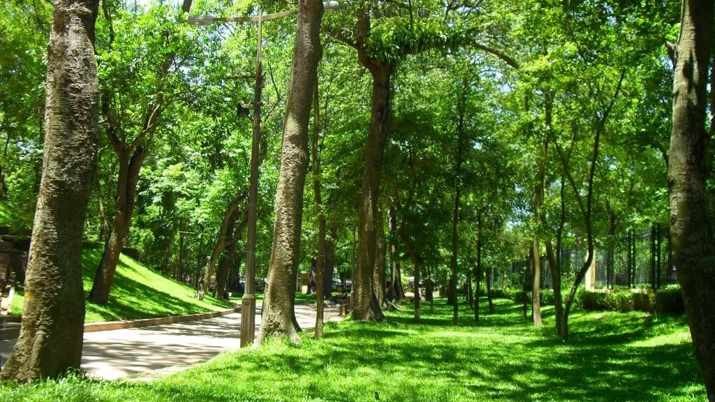 công viên bách thảo