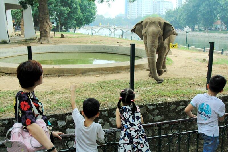 công viên thủ lệ - vườn thú