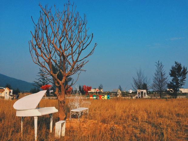 Dã ngoại Thuận Phước Field Đà Nẵng