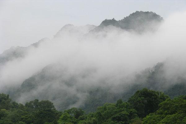 đỉnh mây bạc