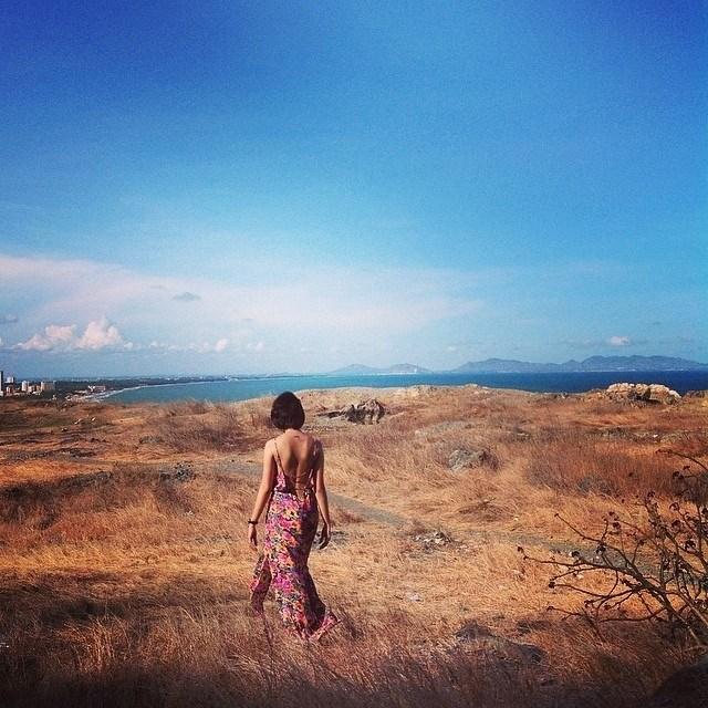Địa điểm đồi cỏ khô đẹp như phim của Vũng Tàu(Nguồn sưu tầm)